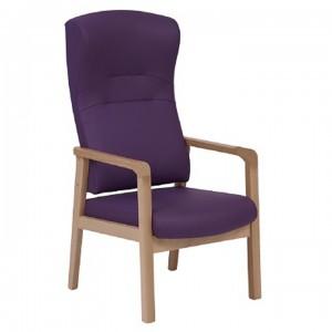 Dalton-Containment-Back-Armchair-DALTOK6026.jpg