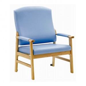 HAMILTON BARIATRIC BLUE (2)