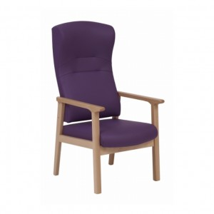 Dalton Containment Back Armchair With Handgrips, DALTOK6027
