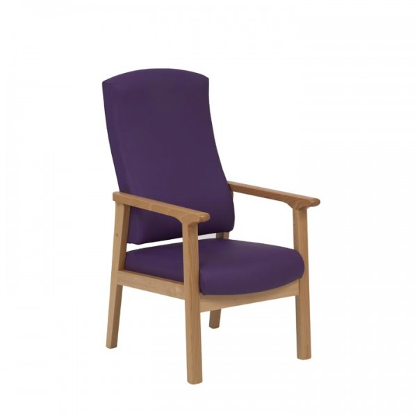 Dalton-Petite-High-Back-Armchair-With-Handgrips-DALTOK6029.jpg